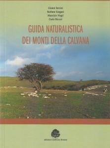 Calvana